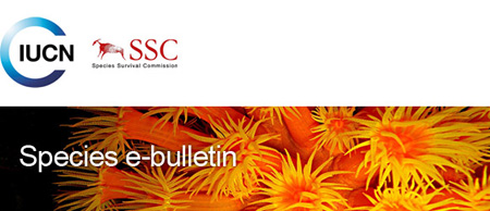 IUCN SSC Species e-bulletin February 2015